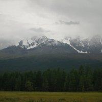 Снежные вершины Северо-Чуйского хребта :: Кристина Воробьева