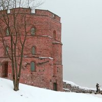 Литва. Вильнюс. Старый город. Башня Гедиминаса. :: Виктория