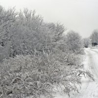 зима в деревне :: Мария Климова