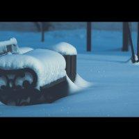 Зима :: Сахаб Шамилов