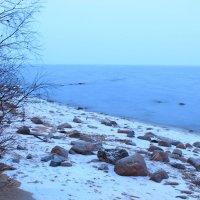 Финский залив :: Leonels Леонова