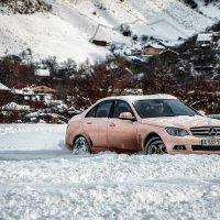 Хрюшка тоже любит снег! :: Вероника Галтыхина