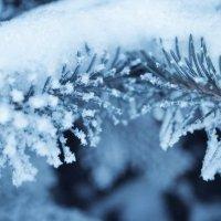 И снова зима... :: Оля Ковалева