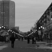 Серые будни :: ARTEseniya Кристина Вальтер