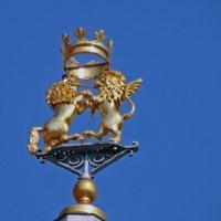 Лев и единорог на крыше Исторического музея ,Москва :: Александр Запылёнов