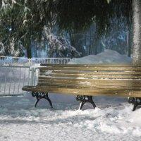 В вечернем парке... :: Андрей Бакунин