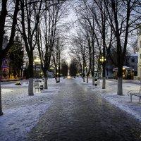 Зимний вечер :: anatoly