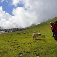 Встреча в горах :: Михаил Баевский