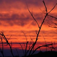 Кровавый закат :: Лилия Гиндулина