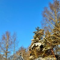 Белым, белым снегом... :: Полторыхин Юрий Полторыхин.