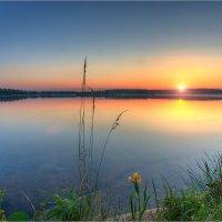 Летом на озере :: Nikita Volkov