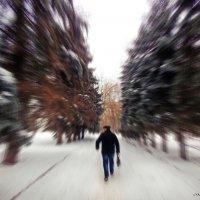 Движение :: лиана алексеева