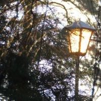 Солнечный фонарь :: Александр Би