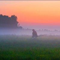 На рыбалку. :: Nikita Volkov