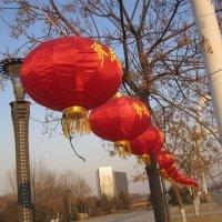 парк в маленьком городке на юге Китая. :: timka musiienko