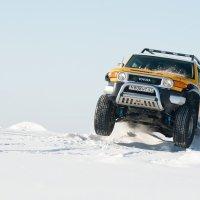 FJ Cruiser :: Алексей Суворов