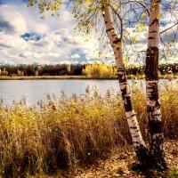 Золотая осень :: Рамиз Сарыев