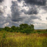 Перед грозой :: Валерий Шибаев