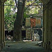 старый двор :: Александр Корчемный