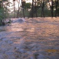 Река :: Анатолий Кузьмич Корнилов