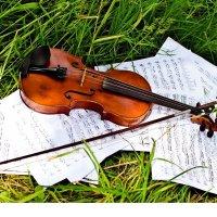 Играет скрипка :: Mariya Chereshnovskaya
