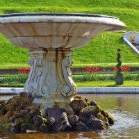 В Петергофе после выключения фонтанов :: Евгения Латунская