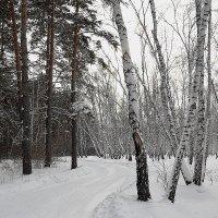 Соседки :: Kassen Kussulbaev