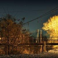 огненное дерево :: Ник Карелин