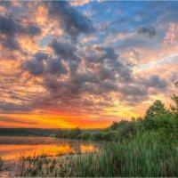 На озере. :: Nikita Volkov
