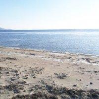 Дикий морской пляж зимой :: Роман Fox Hound Унжакоff