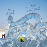 цветы во льду :: Татьяна Исаева-Каштанова