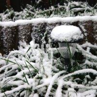 Первый снег. :: Сергей Тупало