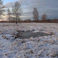 Зимний вечер :: Лариса Кайченкова