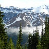 Скалистые горы, июнь 2012 :: Юрий Поляков