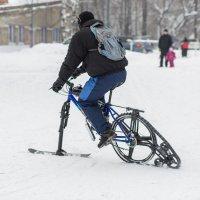 Ленивый лыжник :: Мария Арбузова
