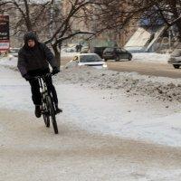 Велосипедист :: Сергей Черепанов