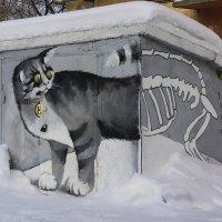 Про кота :: Валерий Молоток