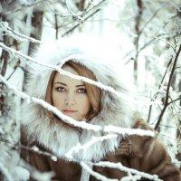 зимой :: Михаил Моисеев