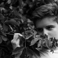 Осень :: Кирилл Лапин