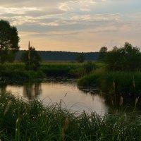 Закат на речушке :: Андрей Словин