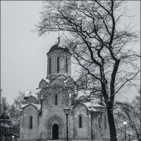 Спасский собор.1425—1427 :: Наталья Rosenwasser