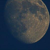 иногда я вижу такую луну через объектив... :: валерий