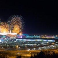 Открытие XXII Олимпийских игр в Сочи :: Дмитрий Палюнин