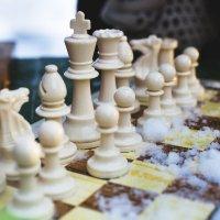 Шахматный пленэ́р :: Марина Тверитнева