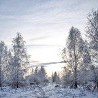 Зимняя зарисовка. :: Андрей В.