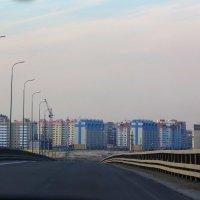 Дорога домой. :: OlgaOS Pirogova