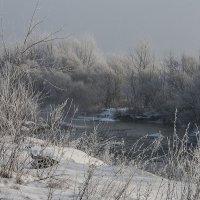 Морозно. :: ФотоЛюбка *