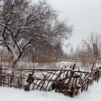А снег идёт... :: Dr. Olver