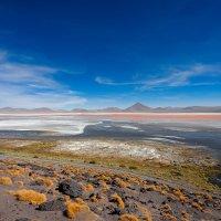 Боливия :: Борис Гончаров