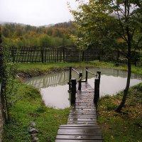 После дождя :: Анисимов Сергей